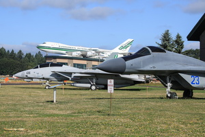 Fulcrum, Tomcat & 747 on the front lawn
