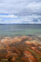 Yellowstone Lake from West Thumb Geyser basin