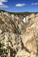 Lower Falls & Yellowstone Canyon