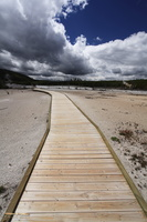 Walkway through Norris geyser basin