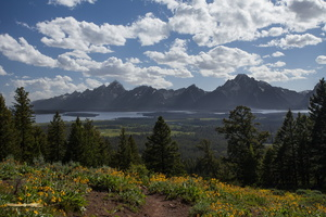Grand Teton range from Grand View Point