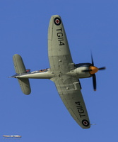 "Hawker Sea Fury FB.11 ""Argonaut"""