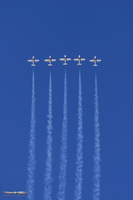 Canadian Air Force Snowbirds demo team
