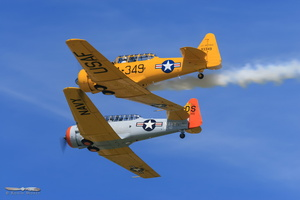 North American SNJ-5 & T-6G Texan