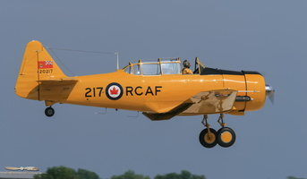 North American (CCF) Harvard 4