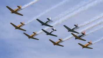 Harvards & Texans