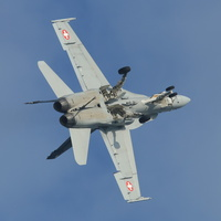 Swiss Air Force F/A-18 display