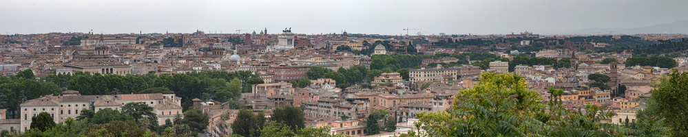 Trastevere, Navona and Forum disctricts from Janiculum
